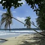 CAHUITA – COSTA RICA. POR ADRIANA