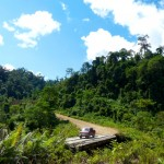 Charla Viaje a Borneo en grupo