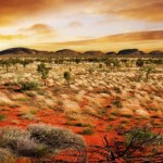Los Viajes que cambian la vida. Viaje a Australia