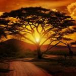 Cinco Lugares Especiales de África que no te puedes perder