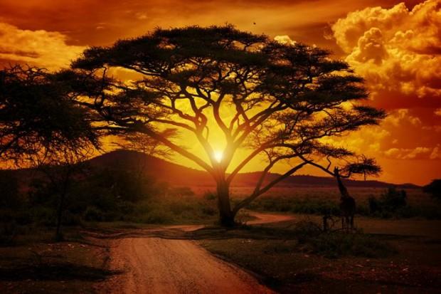 Lugares Especiales de África