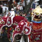 ¿Conoces el festival más importante de Sri Lanka?