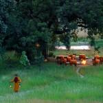 luna de miel de aventura en el corazón de la India
