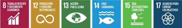 Trabajo decente, producción y consumo responsable, acción por el clima, vida submarina. Vida de ecosistemas terrestres, alianzas para lograr los objetivos.