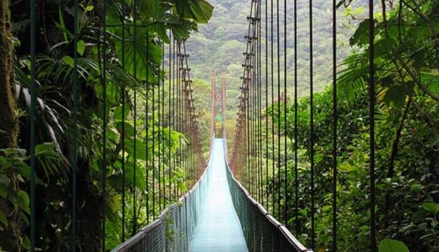 El Bosque Nuboso Costa Rica