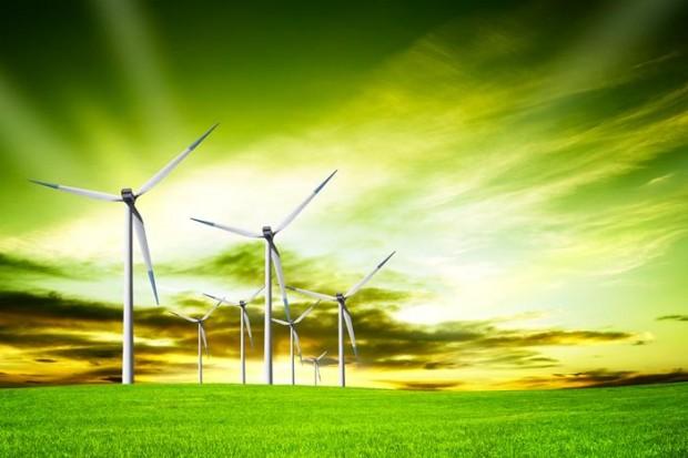 El Viaje y la Protección Medioambiental