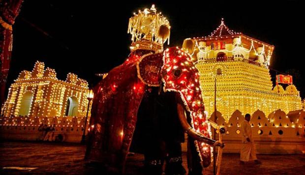 El espectáculo del Festival Perahera de Kandy. Viaje a Sri Lanka