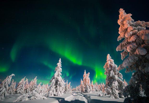 Viaje a Laponia en Navidad: auroras boreales