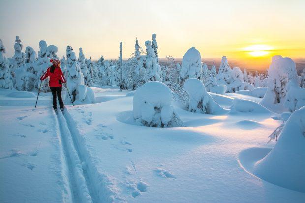 Viaje a Laponia: raquetas de nieve
