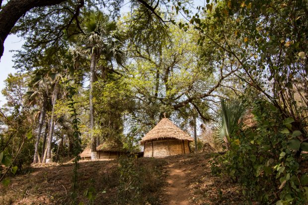 Viaje en familia con Tarannà. Senegal