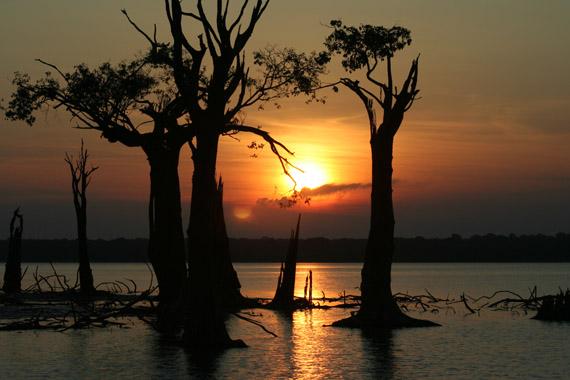 Amazonas_2005_060